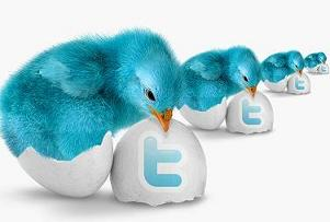 Fluffy Twitter Bird